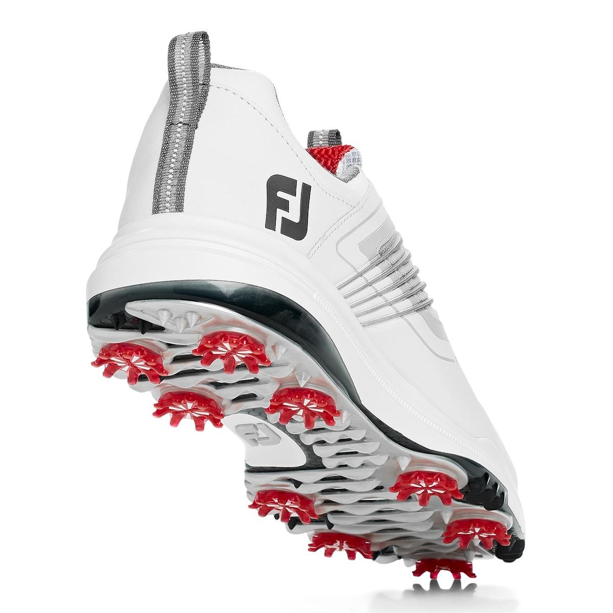 FJ Fury