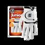 FJ Junior